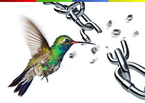 Google hummingbird e il futuro del link building