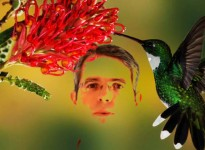 Matt Cutts with Hummingbird