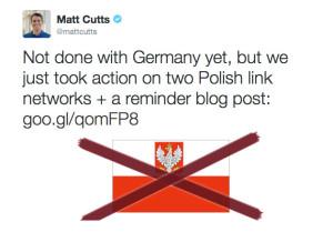 Matt Cutts penalizza due reti di link polacche