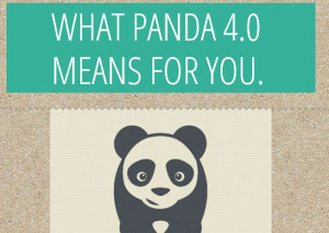 Authority e Google Panda 4.0