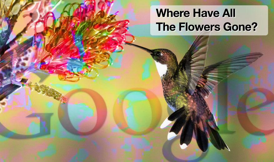 Google Hummingbird: 10 mesi dopo