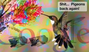 Google Pigeon 1.0
