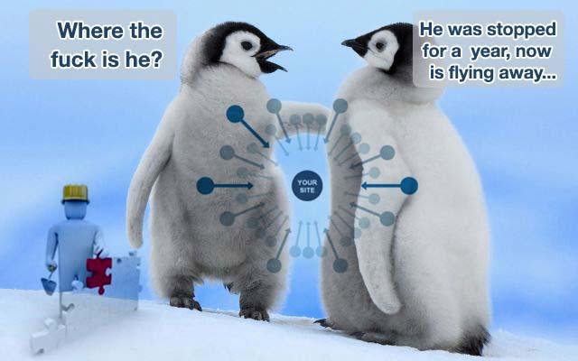 Falso allarme per un Penguin 3.1
