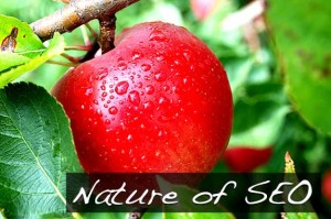 Non chiamatela SEO naturale e nemmeno organica...